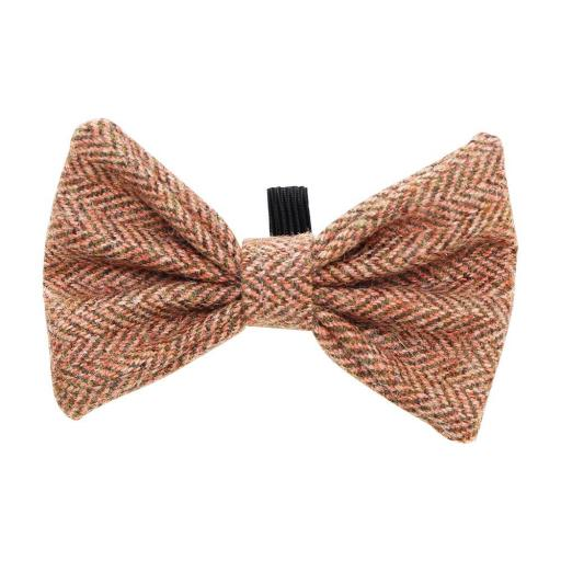 Orange Tweed Bow Tie