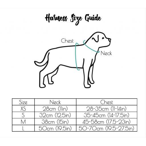Grey Dotty Harness